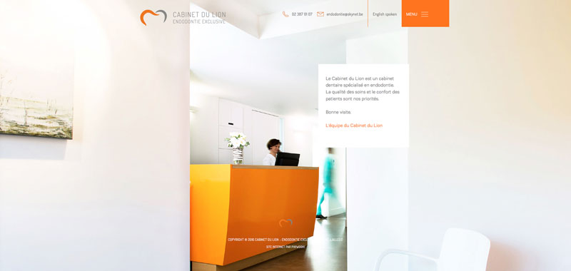 Cabinet du lion - site web page d'accueil par Pixiwooh!