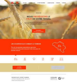 Moës assurances - site web responsive page d'accueil par Pixiwooh!