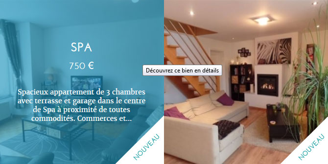 Promisia - site web biens immobiliers
