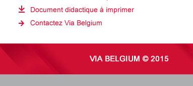 VIA Belgium newsletter - pied de page par Pixiwooh!